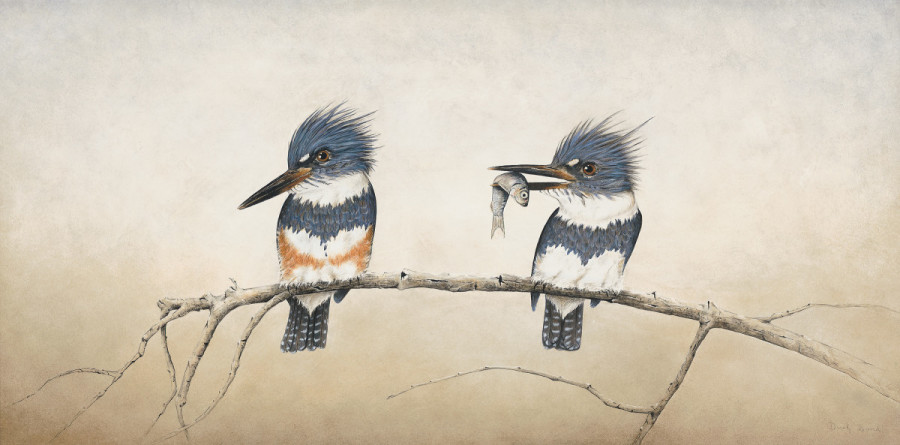 Little River Kingfishers by Derek Bond, Limited Edition print from original egg tempera painting.