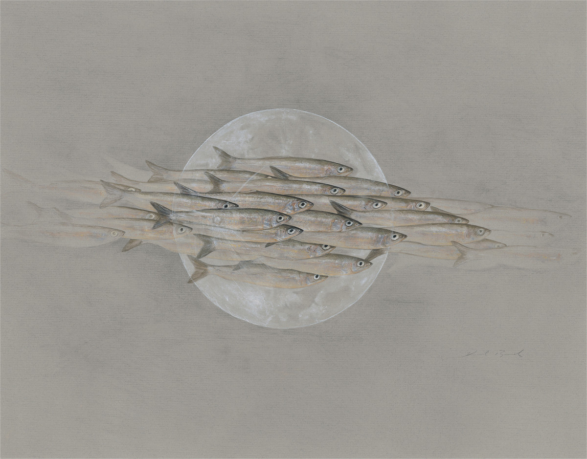 Nightfish by Derek Bond, Limited Edition print from original egg tempera painting on Ingres paper.