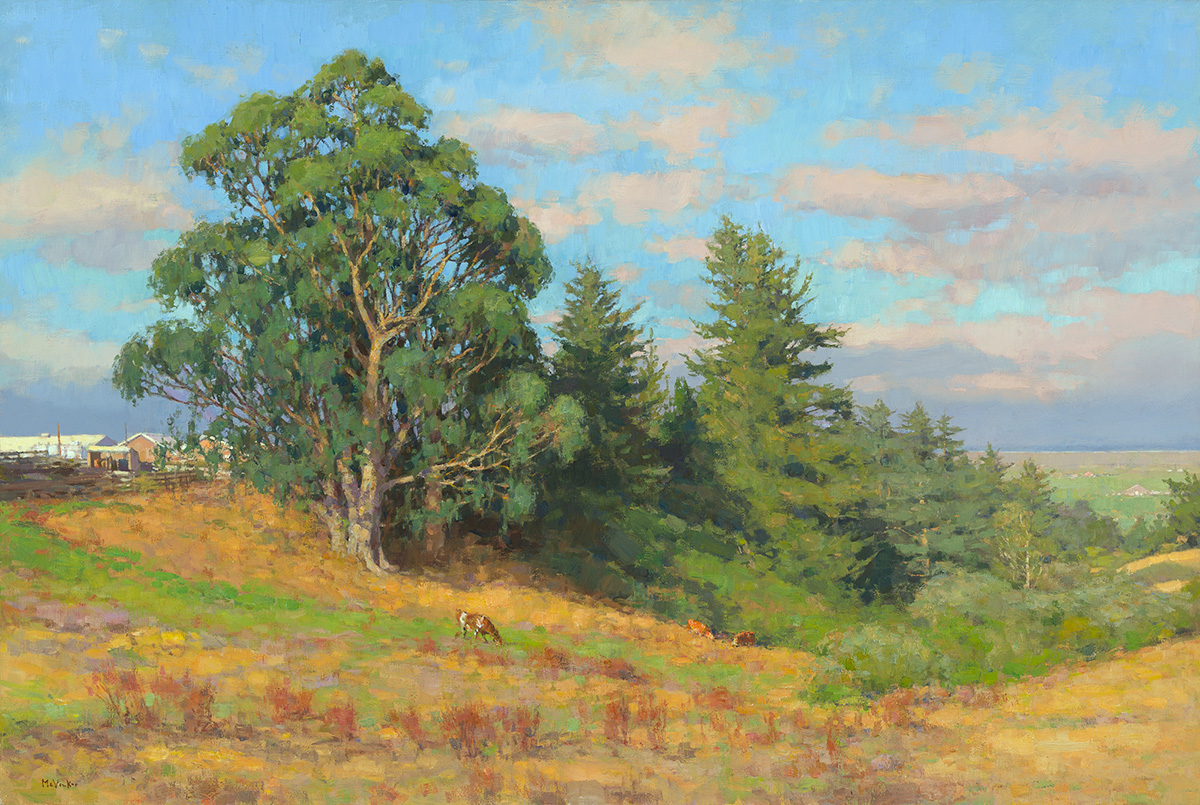 Eucalyptus Trees, Summer 9am, oil on linen, 36 x 54