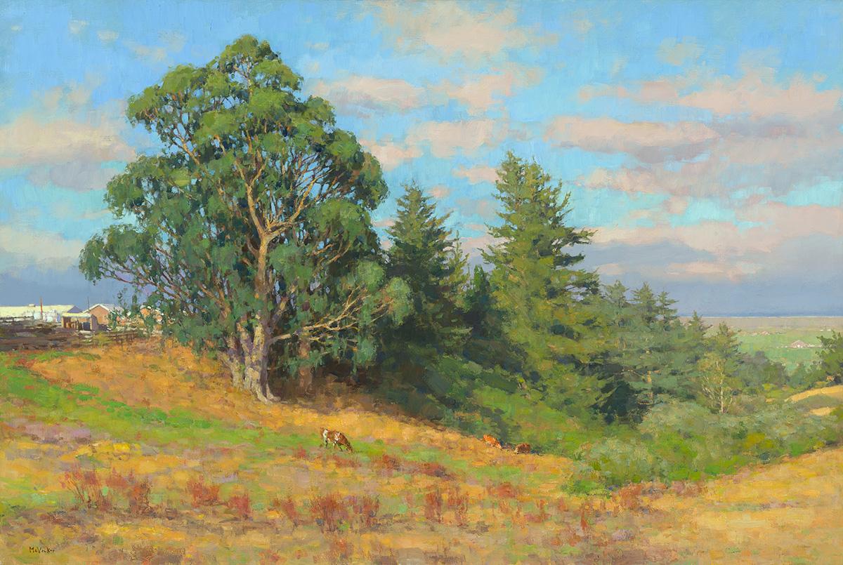 Eucalyptus Trees, Summer 9am, oil on linen, 36 x 54
