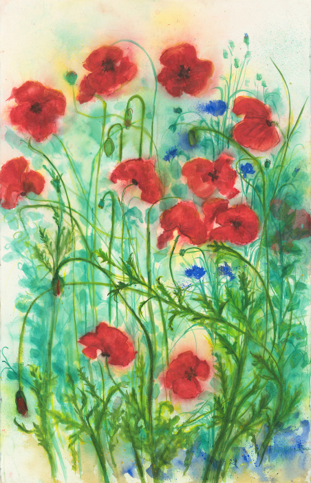 Cheryl Rau, Poppy Explosion, Limited Edition print from original watercolor.